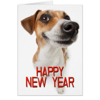 Happy New Year, Dog Greeting Card