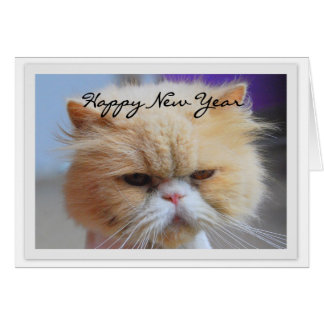 Happy New Year Persian Cat Humour Cards