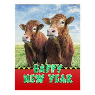 HAPPY NEW YEAR witch the cow boys Postcard