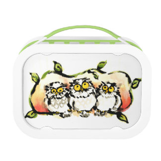 Happy owl brothers/the wax three sibling who is lunch boxes