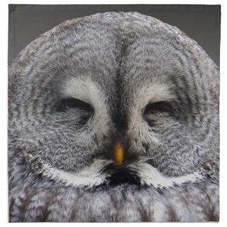 Happy Owl Napkin