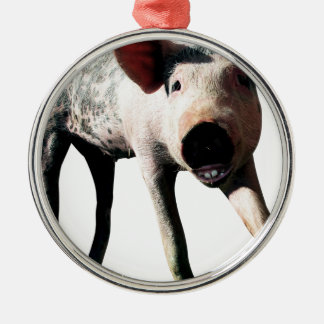 Happy Pig Long Leg Funny Christmas Ornament