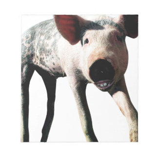 Happy Pig Long Leg Funny Notepad