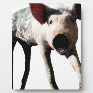 Happy Pig Long Leg Funny Plaque