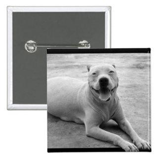 Happy pitbull button