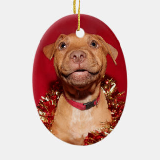 Happy pitbull puppy Christmas Christmas Ornament