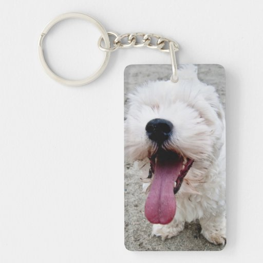 Happy Puppy white dog, malteese, maltipoo. Acrylic Key Chains