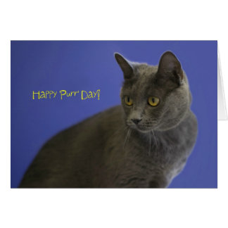 Happy Purr Day Russian Blue by Focus for a Cause Card