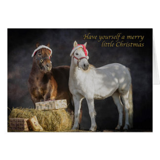 Happy Shetland pony Christmas Card