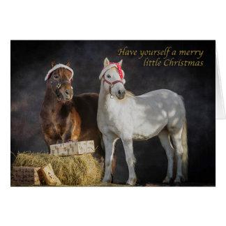 Happy Shetland pony Christmas Greeting Card