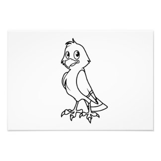 Happy Smiling Eaglet Black and White Cards Photo Print