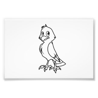 Happy Smiling Eaglet Black and White Cards Photographic Print