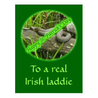 Happy St. Patty's Day No Snakes Postcard