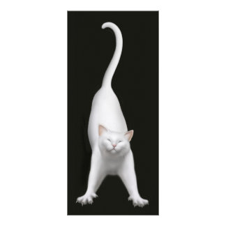 Happy Stretching Cat Bookmark Rack Card