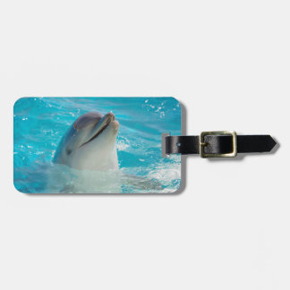Happy Swimming Dolphin Luggage Tag