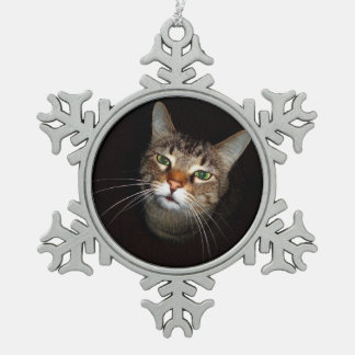 Happy Tabby Wiskers Pewter Snowflake Decoration