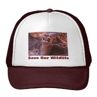 Happy Tau Save Our Wildlife Hat