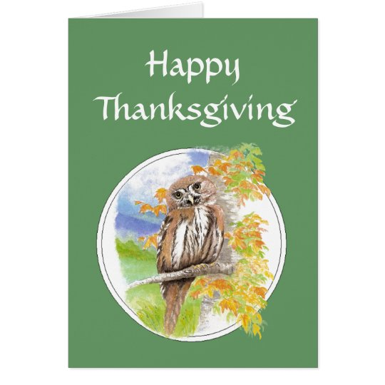 Happy Thanksgiving, Autumn, Fall Owl  Bird, Nature Card
