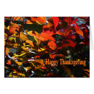 Happy Thanksgiving-Autumn Leaves Greeting Card