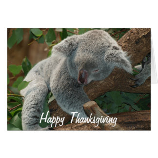 Happy Thanksgiving Napping Koala Bear Card
