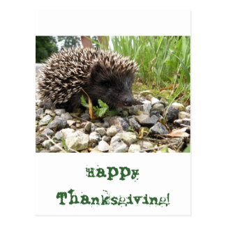 Happy Thanksgiving! Postcard