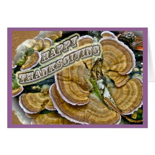 Happy Thanksgiving Shelf Fungus Series Greeting Card