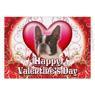 Happy Valentines Day Boston Terrier Card