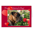Happy Valentine's Day Boxer Dog greeting card
