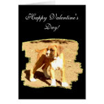 Happy Valentine's Day Boxer greeting card