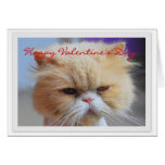 Happy Valentine's Day Persian Cat Humour Greeting Card