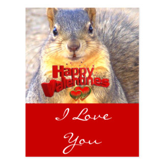 Happy Valentines Day_ Post Cards