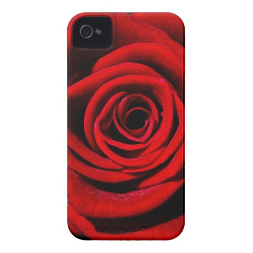 Happy Valentines Day Red Rose Case-Mate iPhone 4 Cases