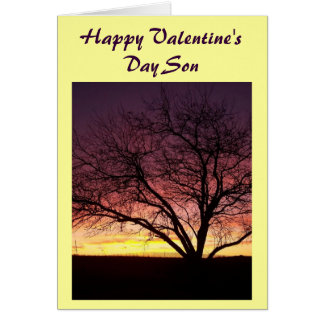 Happy Valentine's Day Son-Greeting Card