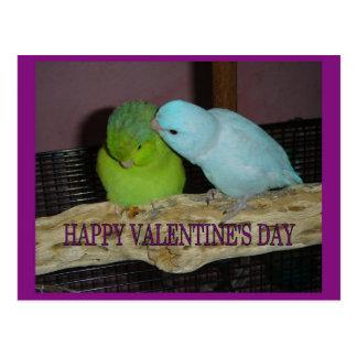 Happy Valentine's day V Post Cards