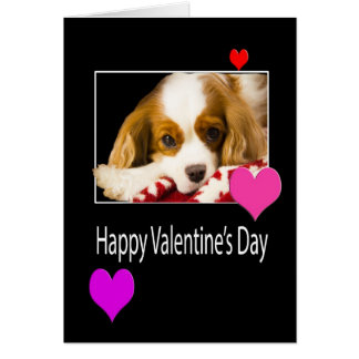Happy Valentine's Day With Hearts And Dog Card