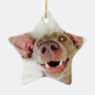 Happy Weimaraner Christmas Ornament
