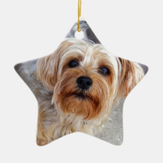 Happy Yorkie Puppy Christmas Ornament
