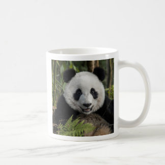 Happy young panda, China Coffee Mug