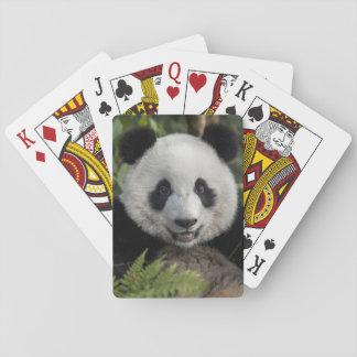 Happy young panda, China Playing Cards