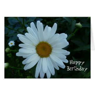 HappyBirthday-Daisy Greeting Cards
