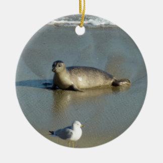 Harbor Seal at La Jolla California Round Ceramic Decoration