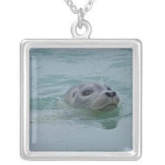 Harbor Seal swimming in Jokulsarlon glacial lake Silver Plated Necklace
