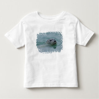 Harbor Seal swimming in Jokulsarlon glacial lake Toddler T-Shirt
