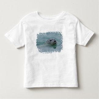 Harbor Seal swimming in Jokulsarlon glacial lake T-shirts