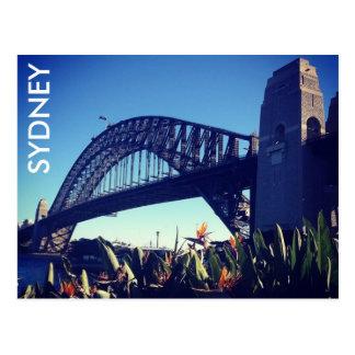 harbour bridge paradise postcard