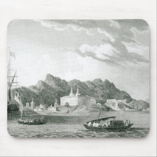 Harbour of Rio Janiero Mouse Mat