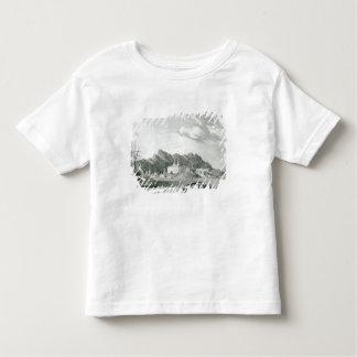 Harbour of Rio Janiero Toddler T-Shirt