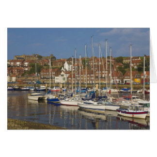 Harbour, Whitby, North Yorkshire, England Card