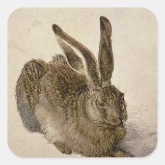 Hare, 1502 square sticker