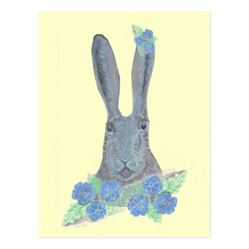 Hare and fFowers postcard.